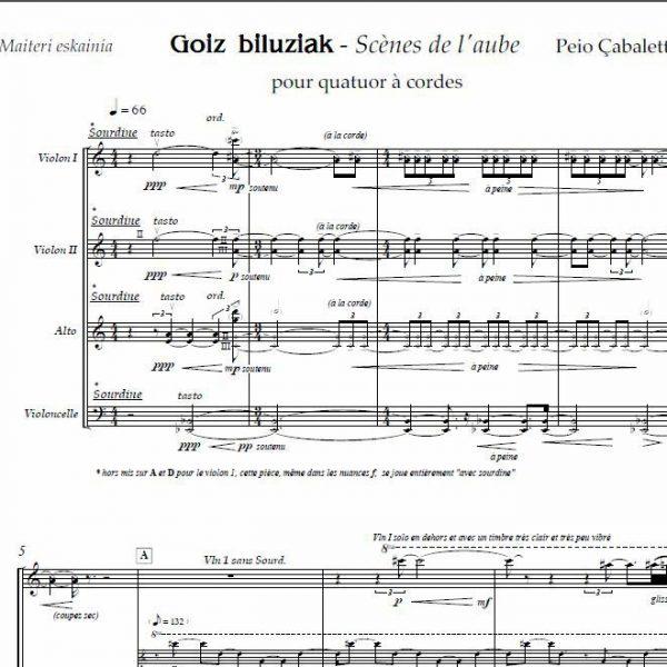 Goiz-biluziak-Score-Peio-Cabalette